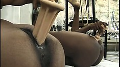 A pack of black amateurs lesbians have a naughty all-girl orgy