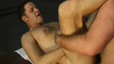Lustful studs take a break from work to satisfy their sexual desires