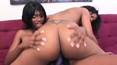 Smoking hot ebony tart moans while having her slit wrecked with a dildo