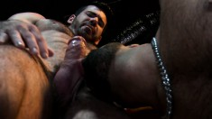Delightful gay stud fucks his boyfriend's lovely ass in every position
