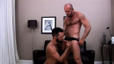 Hunky bears passionately kiss each other and explore their gay desires