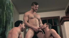 Three muscled hunks feed their hunger for hard meat and rough anal sex