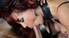 Busty Vanessa in fishnets and latex blows her slave and gets him to lick her