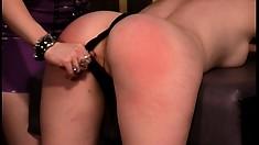 Sensational bitch Sativa slaps cute ass of terrific Paige Richards