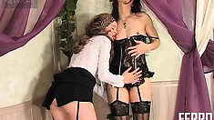 Smoking hot lesbian lovers in lingerie get each other off with oral